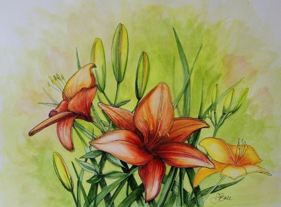 DAYDREAM LILIES - Original Hand Colored Watercolor Botanical Print 11 x 14