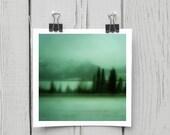Fine art photograph (turquoise 013) emerald woodland landscape