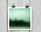 Fine art photograph (turquoise 005) green forest dreamy home decor