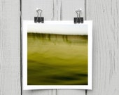 Fine art photograph (landscape 003) olive green woodland home decor