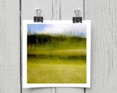 Fine art photograph (landscape 002) lime green grass wall décor