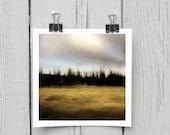 Fine art photograph (landscape 016) yellow chartreuse canadian harvest home decor