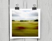 Fine art photograph (landscape 018) chartreuse minimalist home decor