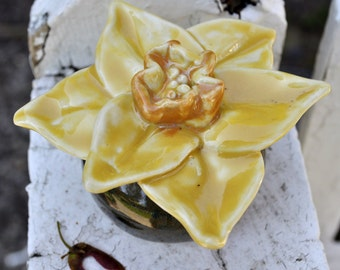 Daffodil Jewelry Box, Spice Jar, Ring Holder