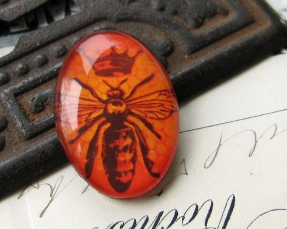 25 x 18mm glass oval cabochon - handmade - Orange Queen Bee