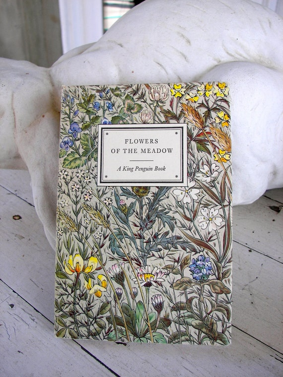 Vintage 1950 Flowers of the Meadow Book with 24 Botanical Plates