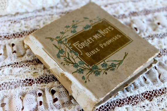 Victorian Prayer Book, Forget-me-nots Bible Promises, 1902
