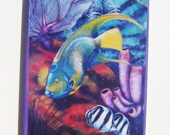 Tropical Fish Magnet Queen Angelfish Miniature Art