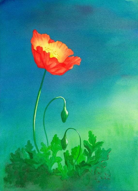 Astral Poppy