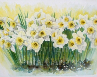 Daffodils Print of Original Painting, Floral 8x10 Watercolor Easter Lillies, Spring Flowers, Yellow, Green