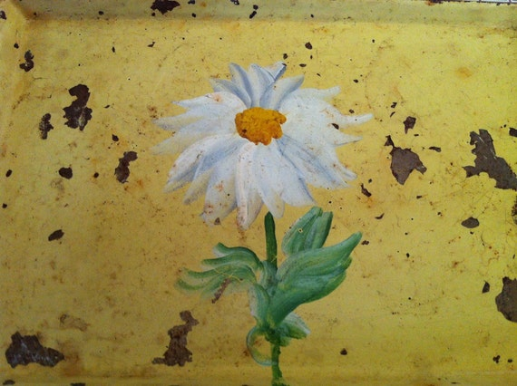 Vintage Sm. Hand painted Tole Tray