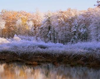 Dreamy Winterscape- Fine Art Photograph