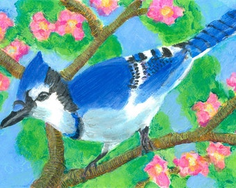 Eastern Blue Jay  Art Print - Limited Edition 10 x 14 - Bird Wall Art - Home Decor - Colorful Painting