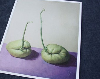 chayote chat