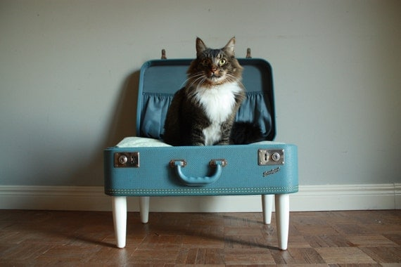 Cozy Cargo Suitcase Pet Bed - Pretty Blue and Green Paisley - Upcycled Luggage