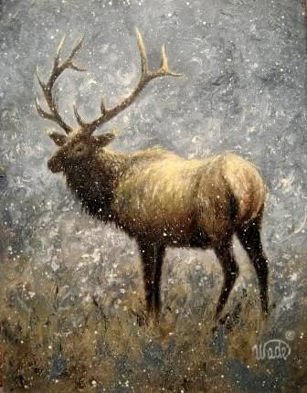 Elk Original Oil Painting Vickie Wade Art Paintings Elk