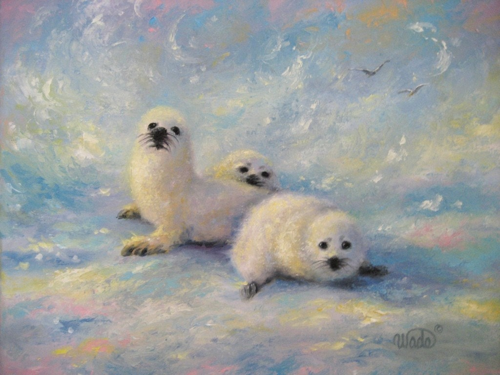 Baby Harp Seals Art Print Baby Harp Seals Paintings Snow
