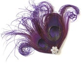 Fascinator, Purple Peacock, Feather Hairclip, Feather Fascinator