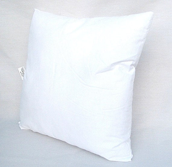20 x 20 pillow form insert for 18x18. Black Bedroom Furniture Sets. Home Design Ideas