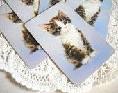 Charming Set of Vintage Playing Cards - Sweet Baby Tabby Kitty Cat