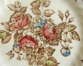 Shabby Pink and Aqua Blue Roses Vintage Brown Transferware Plate English