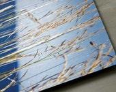 Blonde and Blue - 5x7 - Aluminum Print