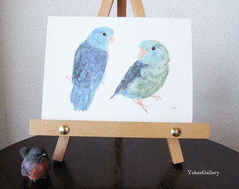 Two Blue Pacific Parrotlets, from my original bird watercolor painting - 5 x 7 ART PRINT