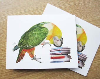 Black-headed Caique, Parrots Art Cards from my Original watercolor painting, black-headed parrot art cards, set of 4, Caique Thank you cards