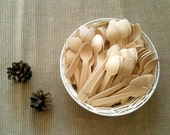 craft ready 100 mini wooden spoons for stamping, painting, making tag