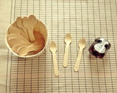 Craft Ready 20 Wooden mini spoons (Disposable)