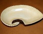 Vintage Czechoslovakia Candy Dish,  Scalloped, Sea Shell Design, Snacks,  Late 1960's