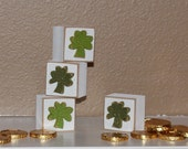 Square BLOCKS With Four CLOVERS for St. Patricks day and home decor