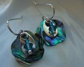 Flower Shaped Paua Shell Earrings