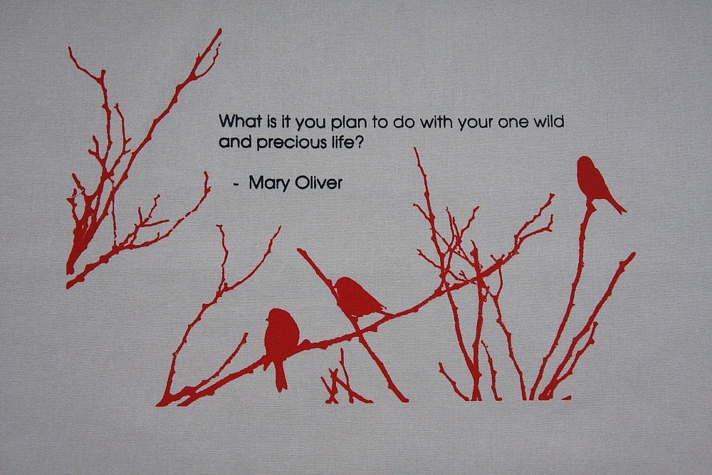 Quotes By Mary Oliver Like Success