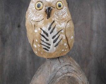 Stoneware Pygmy Owl
