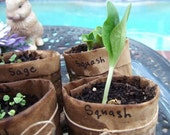 Recycled and Biodegradable paper seed pots