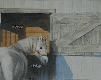 """Original watercolor horse painting - 5"""" x """"7 - matted and unframed  (Frame optional - send convo)"""