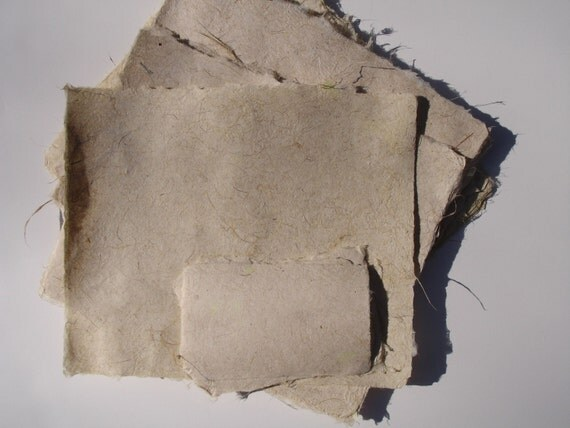 Crisp iris leaves handmade paper, ten sheets