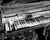 5 DOLLAR CLEARANCE SALE - Abandoned Vintage Fender Electric Piano - 8x10 High Quality Photo Print - 3 Options to Choose
