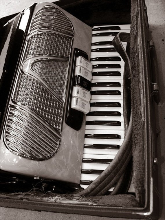 RESERVED LISTING FOR Suzanne - Shiny Vintage Accordion in Ragged Case - 8x10 High Quality Photo Print