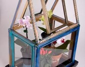 Picture Frame Greenhouse Orchidarium Desktop Planter Thing