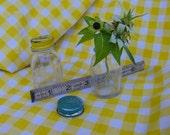 Miniature Ball Mason Canning Jars Salt Shaker and Jar Rustic Country
