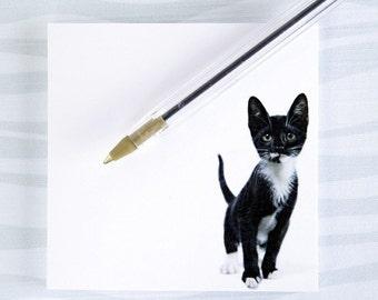 Kitten Post-it
