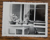 Original Vintage Photograph of Table Laid With Flowers