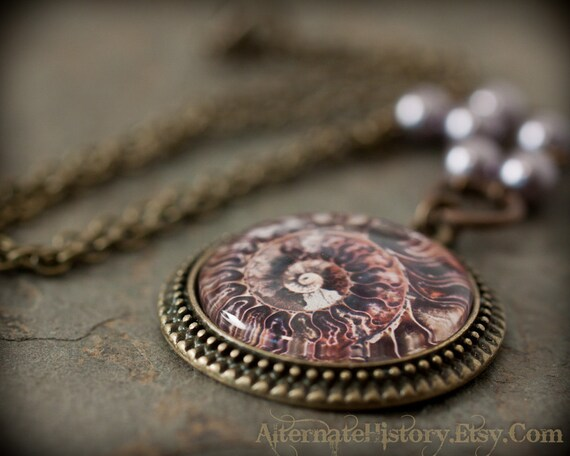 Ammonite Illustration Necklace with Lavender Swarovski Pearls - Natural History