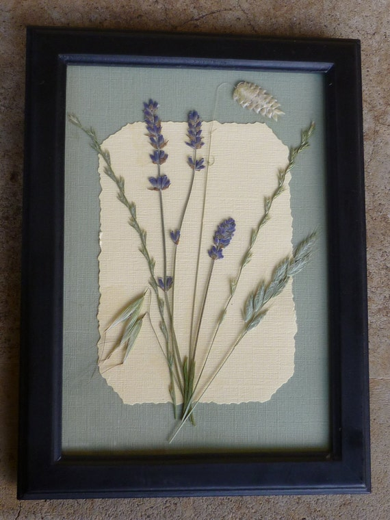 Genuine Lavender Flower and Grasses Arrangement Wall Art Picture