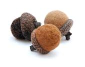 6 Wool Felted Acorns, Brown, Latte, Coffee, Needle Felted - greenbaboondesigns