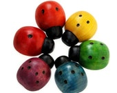 Wood Rainbow Lady bugs - Counting
