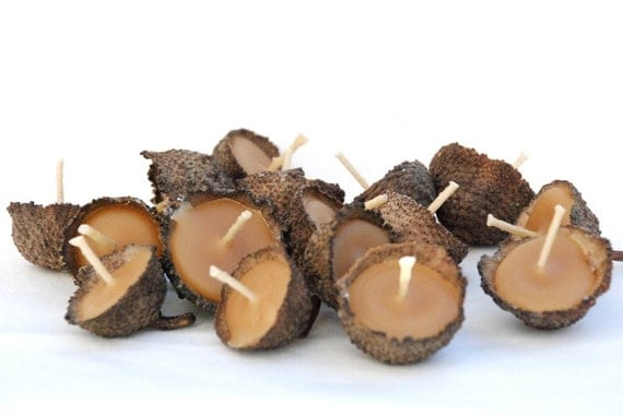 10 Acorn Cap Candles - Floating - Beeswax