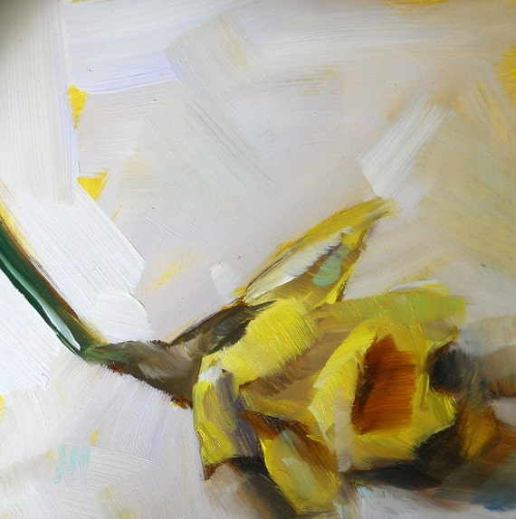 yellow daffodil flower original painting  by moulton 6 x 6 inch